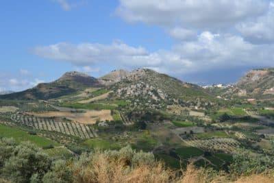 Lassithi plateau – vineyards (2)